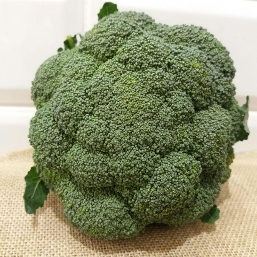 Brócoli Ecológico Natural Gourmet