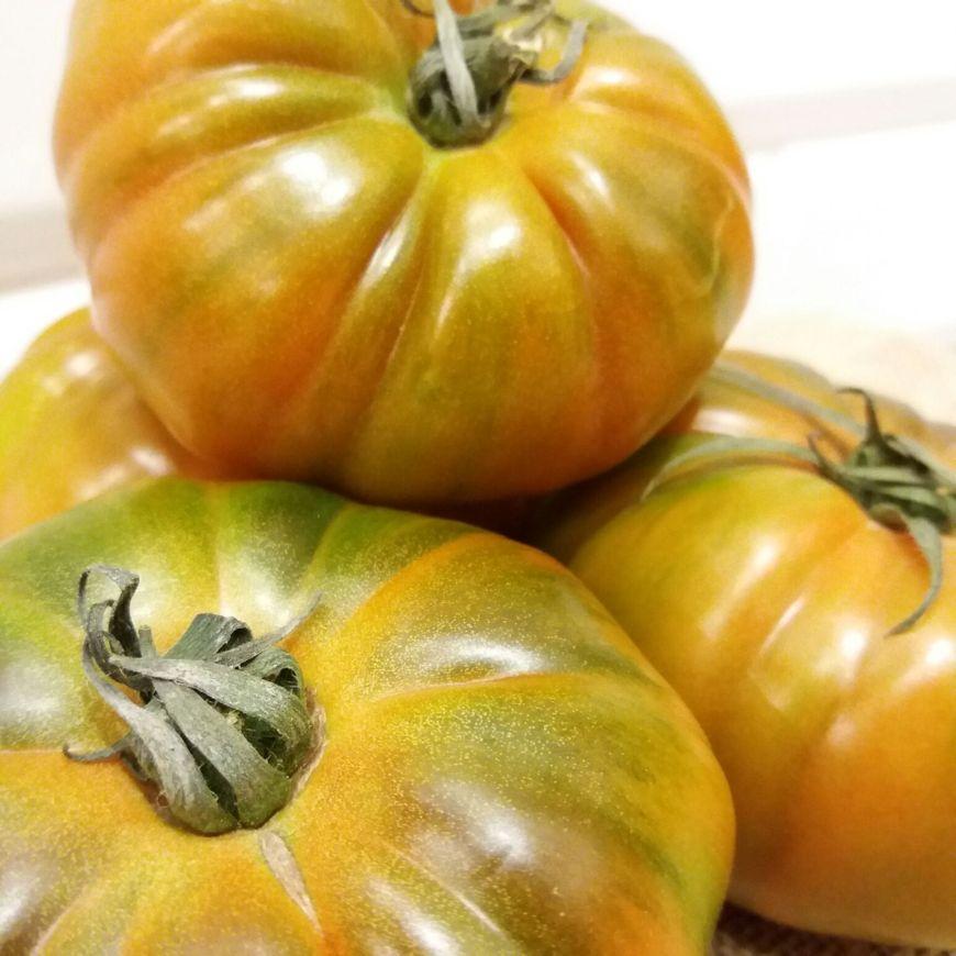 Tomate-Marmande-Ecológico-3