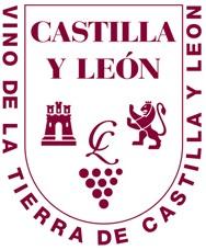 vt-castilla-leon-logo