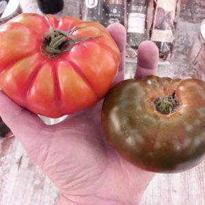 El Tomate Ecológico