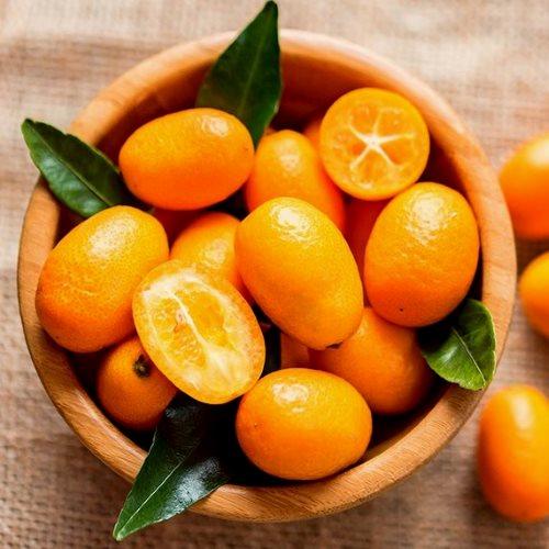 Kumquat Ecológico